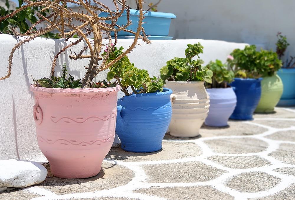 marpisa fleurs grece