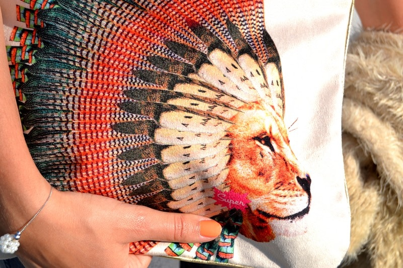 pochette super lion