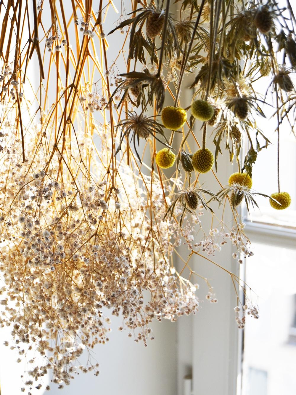 Claire Jaurand Fleuriste decoratrice La Rochelle 7