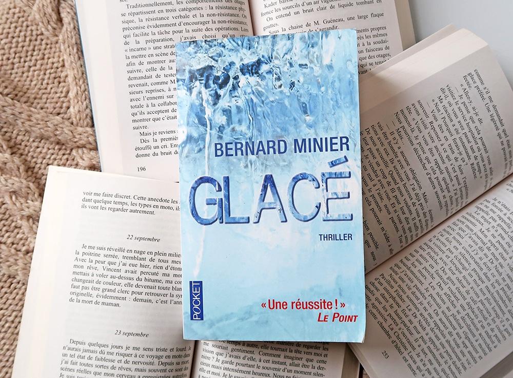 lecture roman policier Bernard minier glacé polar thriller